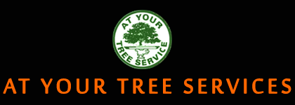 At Your Tree Service